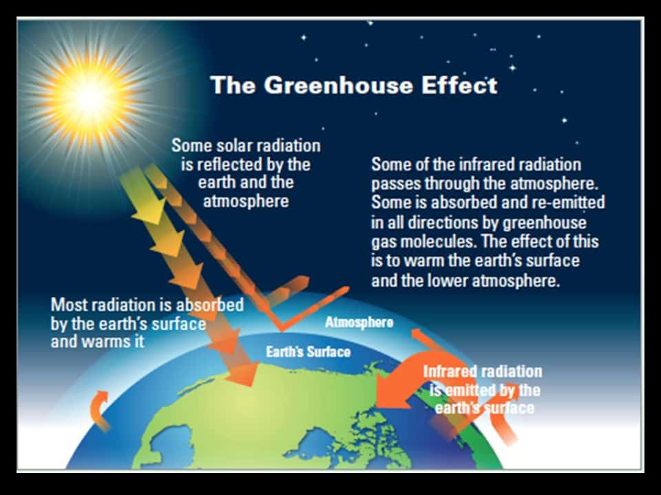 the greenhouse effect and global warming major threats to life on earth Climate change is the greatest global threat to coral reef ecosystems scientific evidence now clearly indicates that the earth's atmosphere and ocean are warming, and that these changes are primarily due to greenhouse gases derived from human activities.