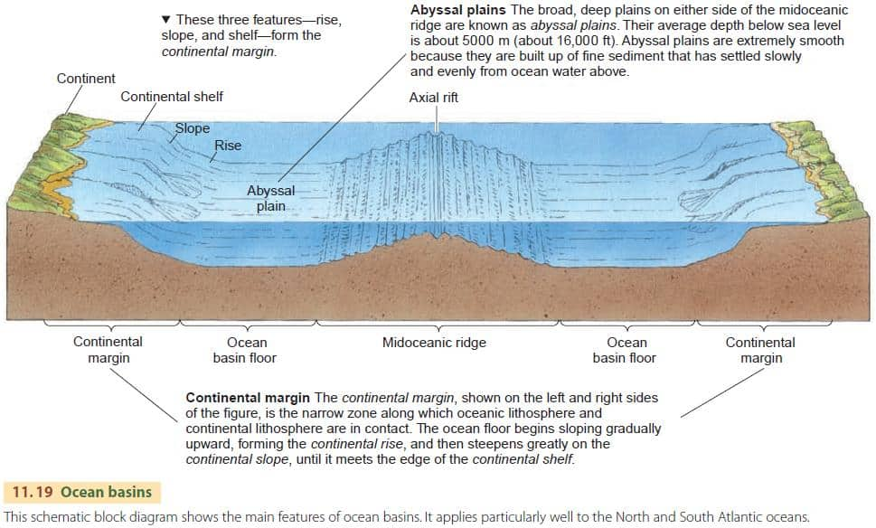 Ocean relief meaning types roles for 10 facts about the ocean floor