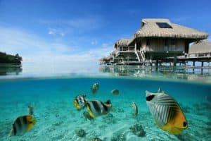 17 Importance of Marine Resources to Pacific Islands