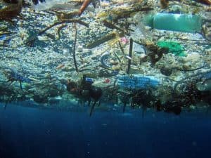 15 effects of ocean pollution on human health