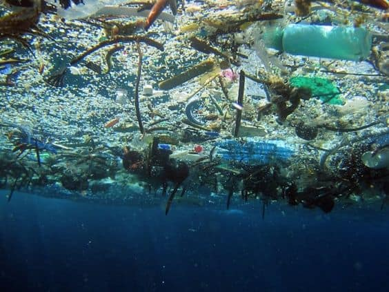 15 Effects of Ocean Pollution on Human Health Which Need to Be Noticed