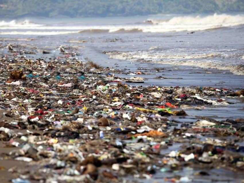 Causes of Pollution in The Sea That You Must Pay Attention