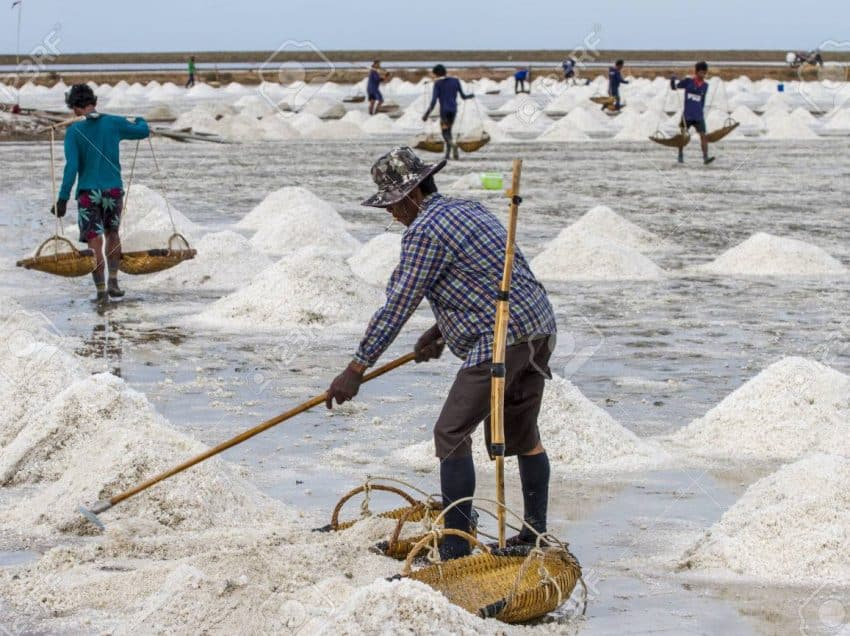 Seawater Salt Levels: Factors and How to Measure