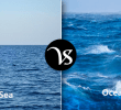Differences in the Sea and Ocean based on the Segments