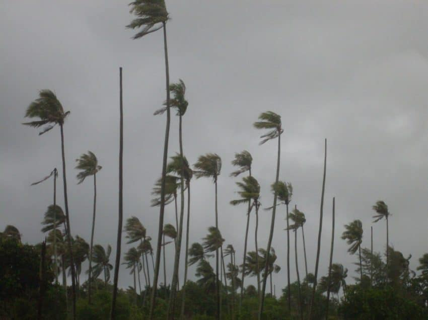 Monsoon Wind: Definition, Process, Type, and Impact